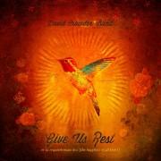 """Dica de CD gospel - David Crowder Band """"Give Us Rest"""""""
